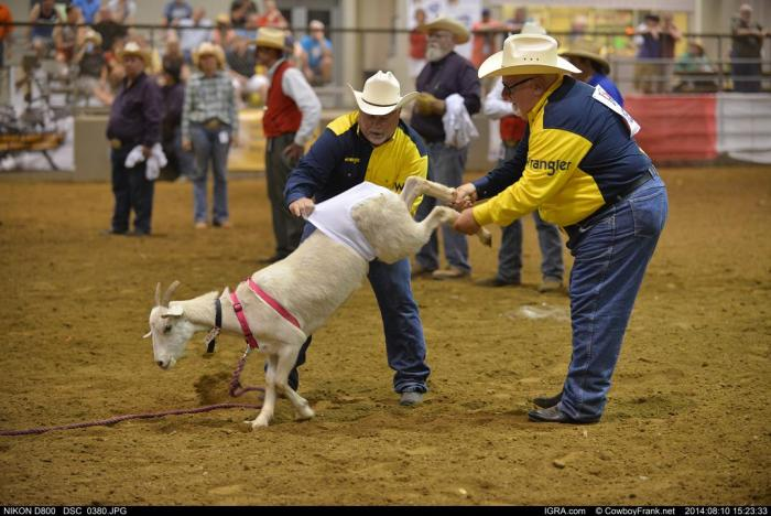 Gay rodeoers compete in a goat dressing event, photo credit: CowboyFrank.net, International Gay Rodeo Association
