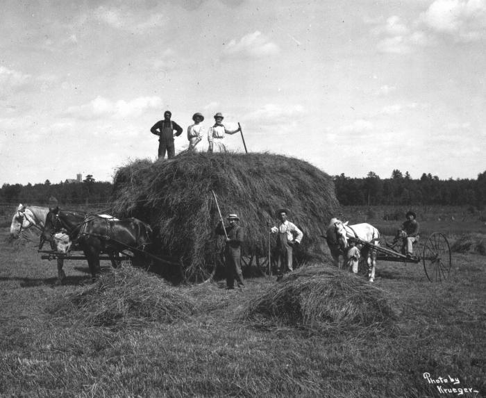 Oneida farmers loading hay on a Wisconsin farm, circa 1900. Photo by Krueger, courtesy of Milwaukee Public Museum.
