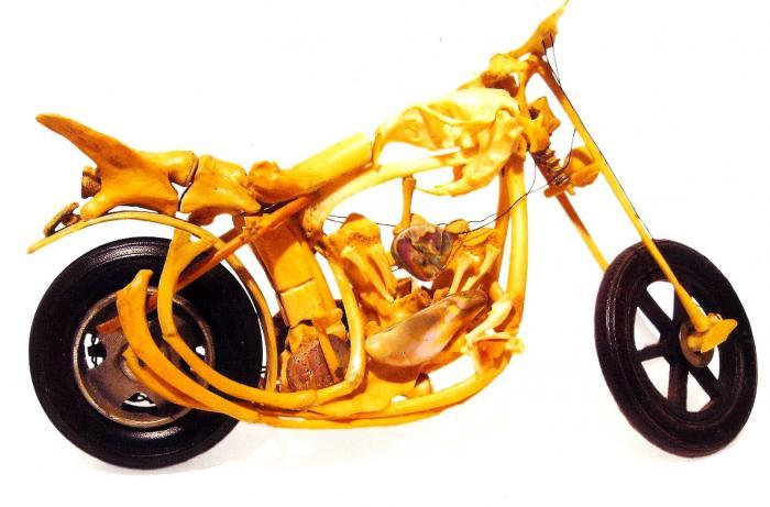 Bone Shaker (Larry Machado, courtesy of the William James Association)